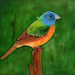 Painted Bunting Tile #2351