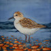 Piping Plover Tile #2366