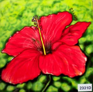 Red Hibiscus #2331